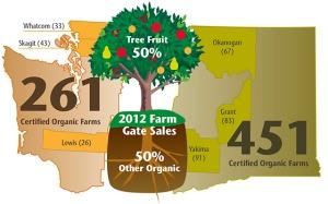 Organic info Map